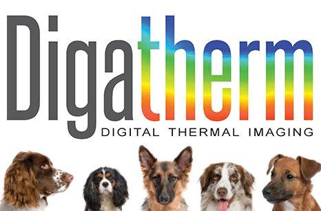 Digatherm Imaging